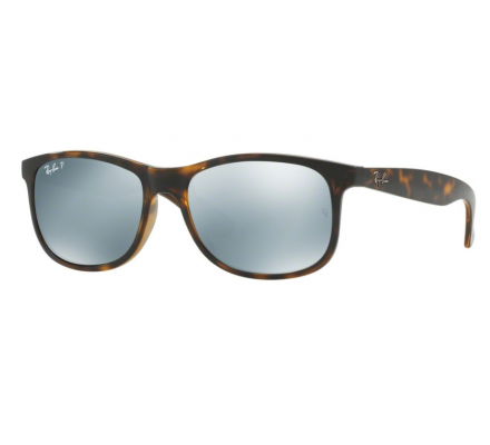 Ray-Ban RB4202 - 710/Y4 55/17 polarized